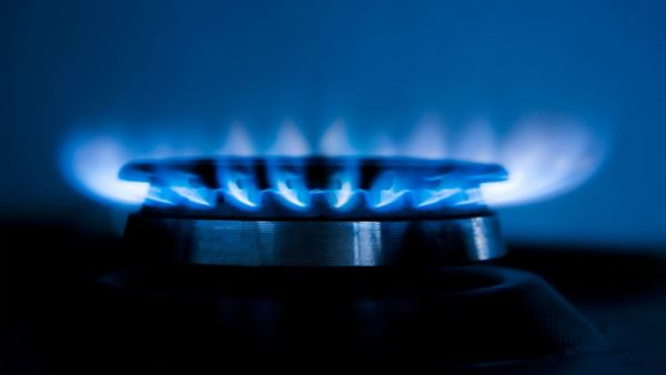 Gas appliance flame
